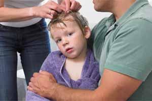 Cómo prevenir los piojos y liendres