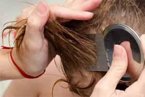 Cómo quitar las liendres del cabello