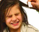 Método casero para eliminar piojos: rápido, definitivamente